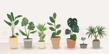 Indoor Plants Vector, Hand Dra...