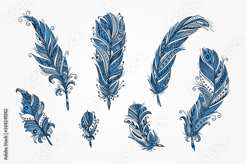 Fototapeta Vector Set of Ethnic feather. Hand Drawn Tribal Feathers. Decorative feathers. Vintage blue Feather.  obraz