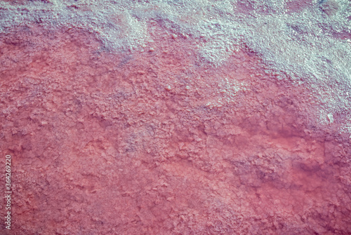 Valokuva Сloseup salt, brine and mud of pink salty Sivash Lake near Azov Sea, colored by