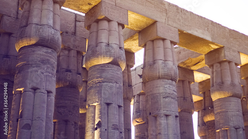 Canvastavla Karnak temple of Luxor architecture column detail close-up wiht uplight in eveni