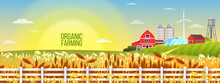 Organic Farm Vector Landscape With Wheat Field, Village Houses, Barn, Sunrise, Water Tower, Greenhouse. Agriculture Rural Background In Flat Style With Fence, Sun, Peaceful Autumn Countryside View