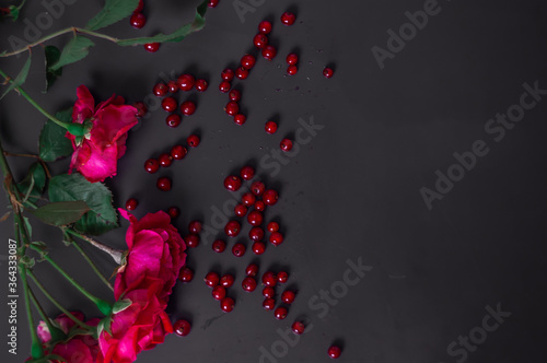red roses with berries on the black background Canvas Print