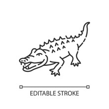 Alligator Pixel Perfect Linear Icon. Exotic Wildlife, Zoo Inhabitant Thin Line Customizable Illustration. Contour Symbol. Large Reptile, Crocodile Vector Isolated Outline Drawing. Editable Stroke