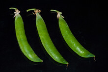 Green Pea Pods On A Black Bac...