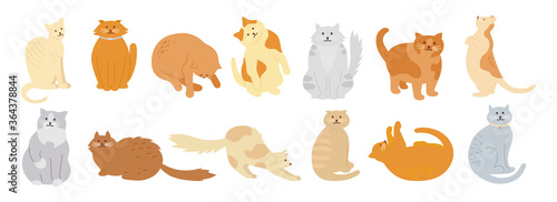 Cat character collection. Cute flat cartoon design set. Different kitty breeds, pet characters. Funny cats sitting, sleeping. Different colors, stripes spots. Hand drawn isolated vector illustration