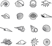 Sea Shell Icon Thin Line