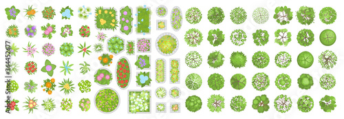 Obraz Vector set. Trees, flowers and flower beds. Top view. Different plants and trees vector set for architectural or landscape design. (View from above) Nature green spaces. - fototapety do salonu