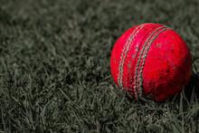Red Ball On Green Grass. Crick...