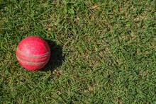 Cricket Ball On Green Grass.