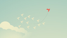 Red Bird Changing Direction An...