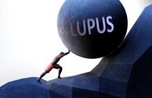 Lupus As A Problem That Makes ...