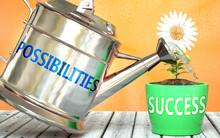 Possibilities Helps Achieve Su...