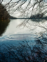 Picturesque Scenery Of Circles...