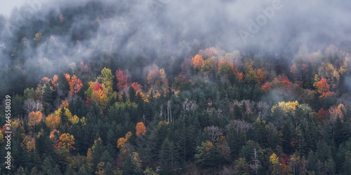 Picturesque drone view of mountain slope covered with colorful trees and snow in autumn day between fog - 364558039