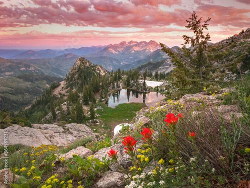 Fotografie, Obraz Summer sunset in the Wasatch Mountains, Utah, USA.
