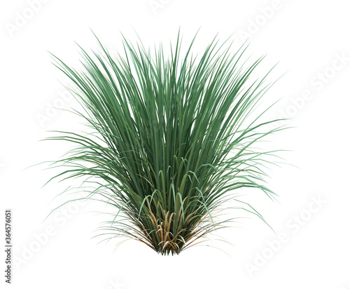 Canvastavla 3d Render Brush Tree Isolated  on white