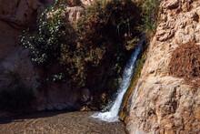 Small Waterfall, Ein Gedi Israel.