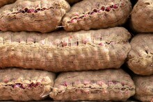 Onion Sacks In An Indian Veget...