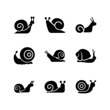 Snail Icon Or Logo Isolated Si...