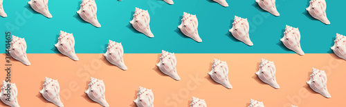 Summer concept with seashells overhead view - flat lay Canvas Print