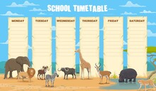 School Timetable With African ...