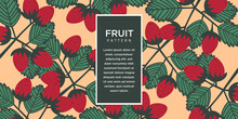 Fruit Illustration Background