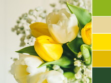 White And Yellow Tulips. Valentine, Mother's Woman's Day Greeting Card. Color Swatch