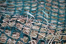 Close Up Of Hay In A Green Hay Net