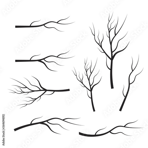 vector set dry tree branches. Leaves, swirls and floral elements Fototapet