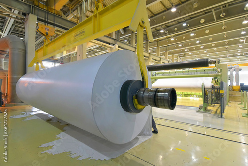 paper mill: production of paper rolls for the printing industry - paper rolls in Fototapete