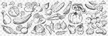 Hand Drawn Vegetables Doodle Set