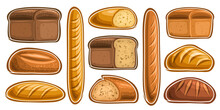 Vector Set Of Assorted Bread And Bakery, Lot Collection Of 11 Cut Out Illustrations Of Fresh Bread On White Background.
