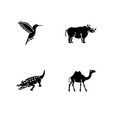 Exotic Animals Black Glyph Icons Set On White Space. Tropical Fauna, Diverse African Wildlife Silhouette Symbols. Little Hummingbird, Camel, Alligator And Rhinoceros. Vector Isolated Illustrations