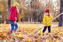 Two Little Cute Girls Raking In Pile Of Autumn Maple Leaves In The Backyard On A Sunny Autumn Day. Kids Helping Cleaning Up The Fallen Leaves.