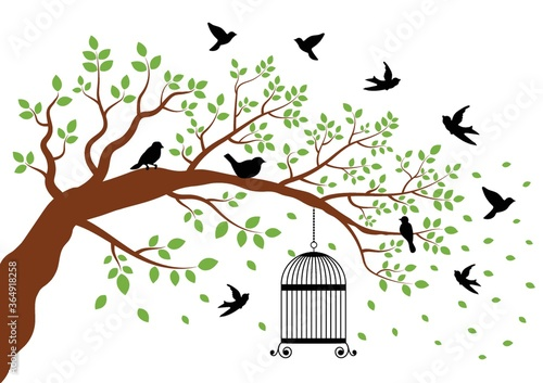 Fototapeta birdcage hanging from a tree with birds nearby