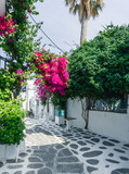 Fototapeta Kwiaty - Narrow street with colorful ans traditional houses, blue and red doors and windows, pink delicate flowers in the old town of Mykonos Island, Greece.