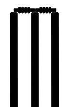 Chricket Stumps Icon
