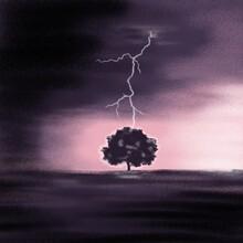 Lightning Strikes A Tree Stand...