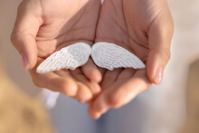 White Gypsum Wings In The Hands Of A Girl. Gently Holds The Concept Of Psychology In Her Hands. Hope, Psychology, Tenderness, Care, Help.