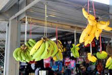 Bananas Hanging Waiting For Cu...