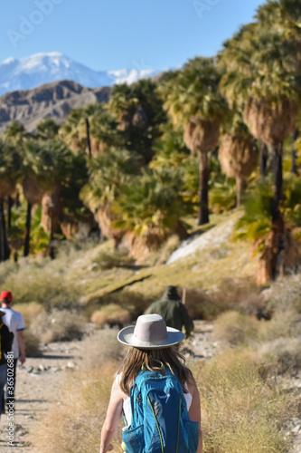 palm springs hiking Fototapet