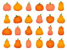 Halloween Fall Pumpkins. Carto...