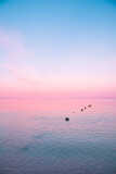 pink sunset over the sea - 365147013