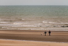 A Couple Walks With A Pit Bull Dog With A Muzzle On The Beach While The Waves Break With Some Violence In The Sand.