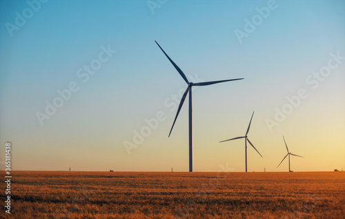 Obraz Wind turbines and agricultural field on a summer day. Energy production, clean and renewable energy. - fototapety do salonu
