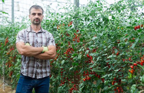 Portrait of successful horticulturist standing with arms crossed in greenhouse n Canvas-taulu