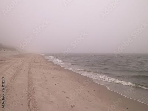 Obraz Coastal area in Lazy, Poland. - fototapety do salonu