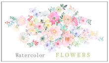 Watercolor Flowers Illustration