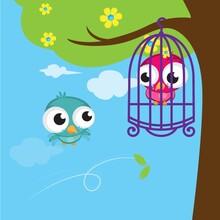 Bird Captured In Cage