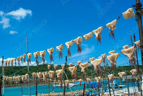 Fotografie, Obraz 沖縄の観光地、奥武島の夏の風物詩の青空に天日干しされている干しイカ